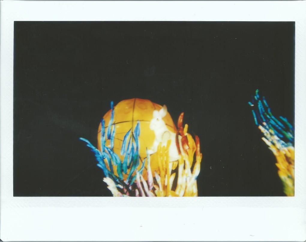 image-30d