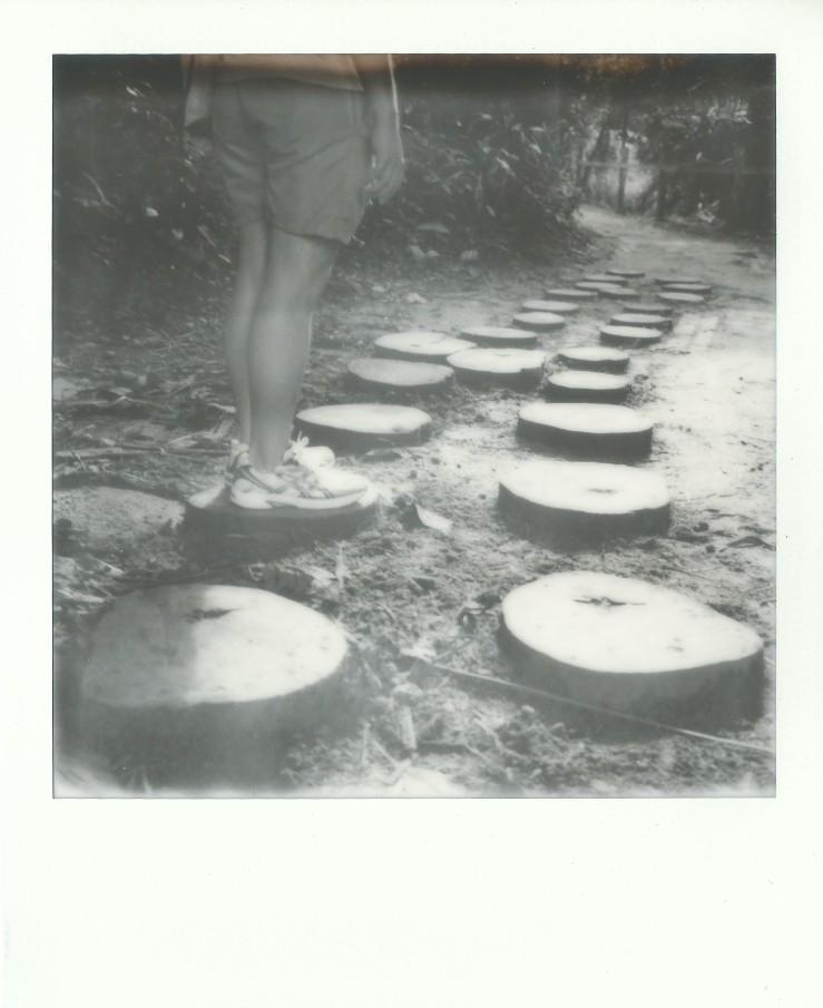 image-33b