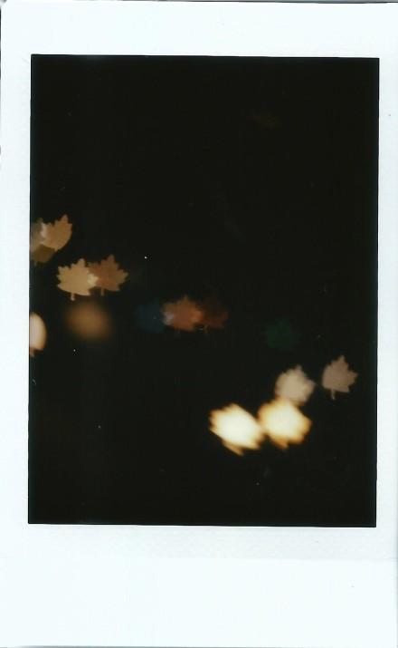 Image (17)e