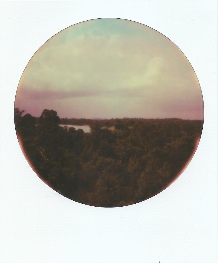 Image (25)d