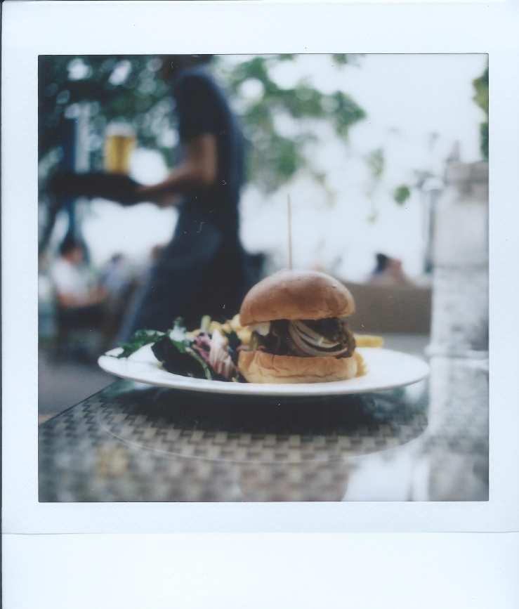 Labrador Park with the RB67 Pro SD x Modified Instax Square
