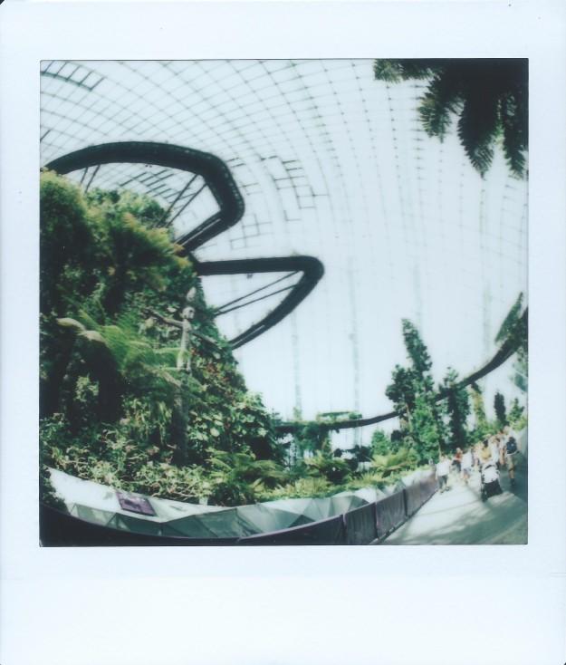 Image (324)d